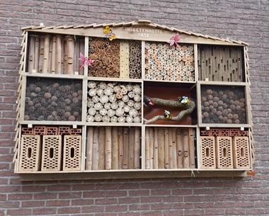 Insectenhotel doet zijn intrede